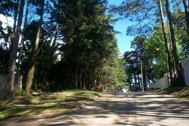 Se vende terreno para DESARROLLO SANTA ROSALIA