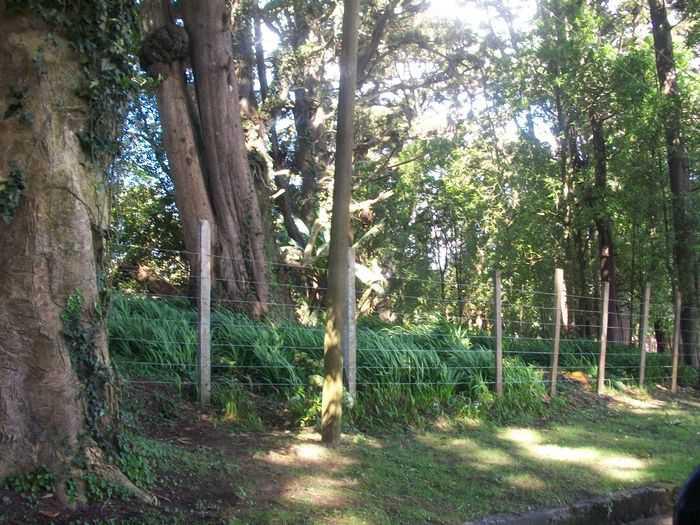cityMax vende terreno para DESARROLLO SANTA ROSALIA
